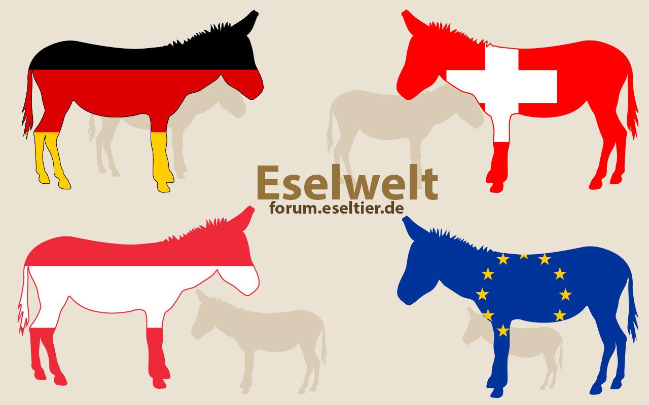 eselwelt.jpg